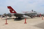 OMAさんが、岩国空港で撮影したアメリカ海軍 F/A-18C Hornetの航空フォト(飛行機 写真・画像)