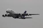 uhfxさんが、関西国際空港で撮影したタイ国際航空 A380-841の航空フォト(飛行機 写真・画像)