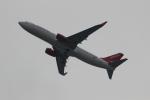 uhfxさんが、関西国際空港で撮影したイースター航空 737-8KNの航空フォト(写真)