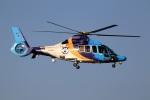 スポット110さんが、羽田空港で撮影した東邦航空 EC155Bの航空フォト(写真)