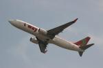 uhfxさんが、関西国際空港で撮影したティーウェイ航空 737-8HXの航空フォト(写真)