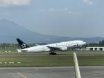 ま〜さんが、鹿児島空港で撮影した全日空 777-281の航空フォト(写真)