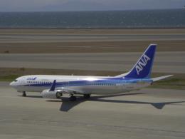 はやたいさんが、中部国際空港で撮影した全日空 737-881の航空フォト(飛行機 写真・画像)