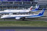 Chofu Spotter Ariaさんが、羽田空港で撮影した全日空 787-9の航空フォト(写真)