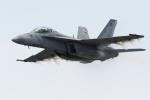 かぷちーのさんが、岩国空港で撮影したアメリカ海軍 F/A-18F Super Hornetの航空フォト(写真)
