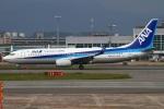 MOR1(新アカウント)さんが、福岡空港で撮影した全日空 737-8ALの航空フォト(写真)