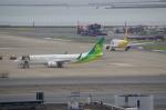 TG36Aさんが、羽田空港で撮影した春秋航空日本 737-81Dの航空フォト(写真)