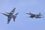 take_2014さんが、岩国空港で撮影したアメリカ海軍 F/A-18F Super Hornetの航空フォト(飛行機 写真・画像)