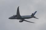 ひめままさんが、宮崎空港で撮影した全日空 787-8 Dreamlinerの航空フォト(写真)