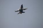つっさんさんが、岩国空港で撮影したアメリカ空軍 F-16CM-50-CF Fighting Falconの航空フォト(写真)
