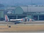 さしょーさんが、小松空港で撮影した航空自衛隊 F-15DJ Eagleの航空フォト(写真)