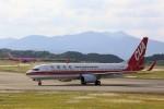 トールさんが、静岡空港で撮影した中国聯合航空 737-89Pの航空フォト(写真)