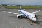 ケツメイシ宮崎~KMIさんが、宮崎空港で撮影した全日空 787-8 Dreamlinerの航空フォト(写真)