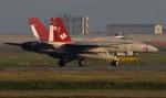 青い翼に鎧武者マークの!さんが、岩国空港で撮影したアメリカ海軍 F/A-18C Hornetの航空フォト(写真)