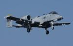 青い翼に鎧武者マークの!さんが、岩国空港で撮影したアメリカ空軍 A-10C Thunderbolt IIの航空フォト(写真)