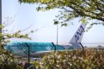NormanOshimaさんが、トゥールーズ・ブラニャック空港で撮影した全日空 A380-841の航空フォト(写真)