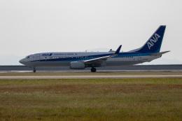 チャッピー・シミズさんが、岩国空港で撮影した全日空 737-881の航空フォト(飛行機 写真・画像)