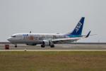 チャッピー・シミズさんが、岩国空港で撮影した全日空 737-881の航空フォト(写真)