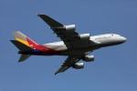 sin747さんが、成田国際空港で撮影したアシアナ航空 A380-841の航空フォト(写真)