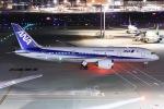 しゃこ隊さんが、羽田空港で撮影した全日空 787-8 Dreamlinerの航空フォト(写真)