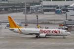 starlightさんが、ミュンヘン・フランツヨーゼフシュトラウス空港で撮影したペガサス・エアラインズ 737-82Rの航空フォト(写真)
