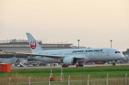 ひろぽ~んさんが、仙台空港で撮影した日本航空 787-8 Dreamlinerの航空フォト(飛行機 写真・画像)