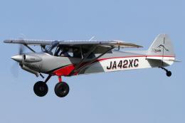 Hariboさんが、名古屋飛行場で撮影したニセコ・アビエーション CC19-180 XCubの航空フォト(飛行機 写真・画像)