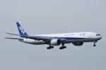 Jyunpei Ohyamaさんが、ロンドン・ヒースロー空港で撮影した全日空 777-381/ERの航空フォト(写真)