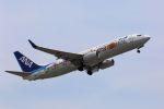 kazuchiyanさんが、岩国空港で撮影した全日空 737-881の航空フォト(写真)
