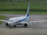 ヒロリンさんが、新石垣空港で撮影した全日空 737-881の航空フォト(写真)