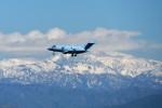 @あきやんさんが、小松空港で撮影した航空自衛隊 U-125A(Hawker 800)の航空フォト(写真)