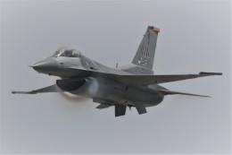 花田花男さんが、岩国空港で撮影したアメリカ空軍 F-16CM-50-CF Fighting Falconの航空フォト(飛行機 写真・画像)