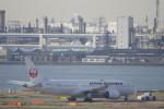 リンリンさんが、羽田空港で撮影した日本航空 787-8 Dreamlinerの航空フォト(写真)