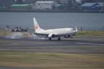 リンリンさんが、羽田空港で撮影した日本航空 737-846の航空フォト(写真)