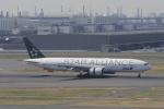 リンリンさんが、羽田空港で撮影した全日空 777-281の航空フォト(写真)