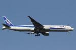 camelliaさんが、成田国際空港で撮影した全日空 777-381/ERの航空フォト(写真)
