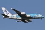 camelliaさんが、成田国際空港で撮影した全日空 A380-841の航空フォト(写真)