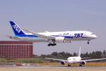 yabyanさんが、成田国際空港で撮影した全日空 787-8 Dreamlinerの航空フォト(飛行機 写真・画像)