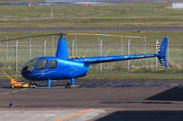 korosukeさんが、南紀白浜空港で撮影した日本法人所有 R44 IIの航空フォト(写真)