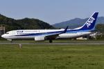 冷やし中華始めましたさんが、松山空港で撮影した全日空 737-881の航空フォト(写真)