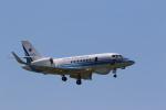 pcmediaさんが、静岡空港で撮影した海上保安庁の航空フォト(写真)
