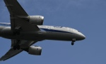 narumasaさんが、羽田空港で撮影した全日空 787-8 Dreamlinerの航空フォト(写真)