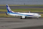 chrisshoさんが、羽田空港で撮影した全日空 737-881の航空フォト(写真)