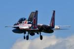 @あきやんさんが、小松空港で撮影した航空自衛隊 F-15DJ Eagleの航空フォト(写真)