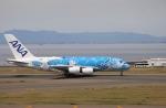 m_aereo_iさんが、中部国際空港で撮影した全日空 A380-841の航空フォト(写真)