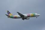 kumagorouさんが、那覇空港で撮影したスカイネットアジア航空 737-4M0の航空フォト(写真)