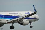 HS888さんが、鹿児島空港で撮影した全日空 A321-211の航空フォト(写真)