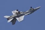 eikas11さんが、岩国空港で撮影したアメリカ海軍 F/A-18F Super Hornetの航空フォト(写真)