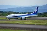 yoshibouさんが、静岡空港で撮影した全日空 737-881の航空フォト(写真)