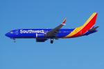 PASSENGERさんが、ロサンゼルス国際空港で撮影したサウスウェスト航空 737-8-MAXの航空フォト(写真)